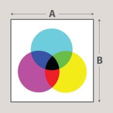 Full Colour Printed Foamboard